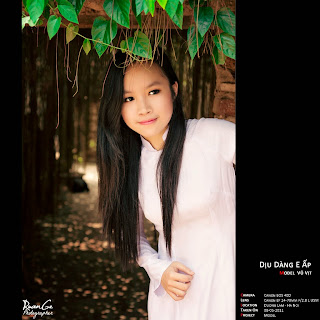 Album thiếu nữ áo dài VIỆT NAM làm hình nền máy tính tháng 12-2013